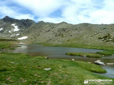 Lagunas de Pelañara-Peña Cítores- Guadarrama; viajes agosto; jerte en flor noviembre